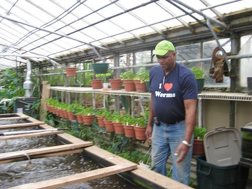 Will Allen in greenhouse