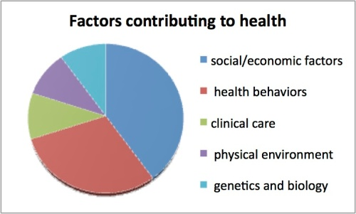 Factors contributing to health