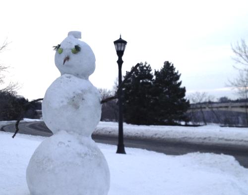 snowman closeup.png