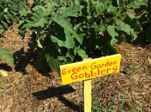 Green Garden Gobblers